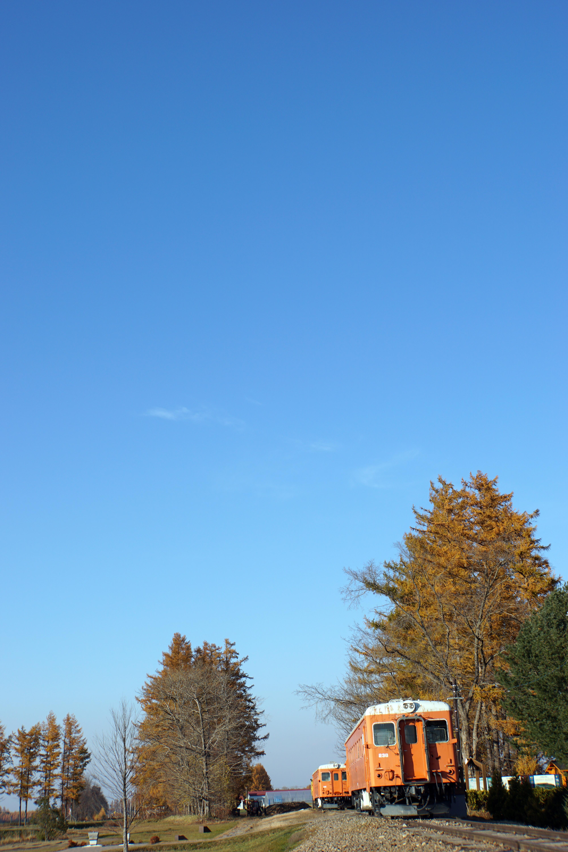 幸福駅⑥2015.11.3