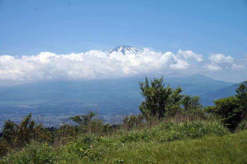 矢倉岳 山頂から見る富士山