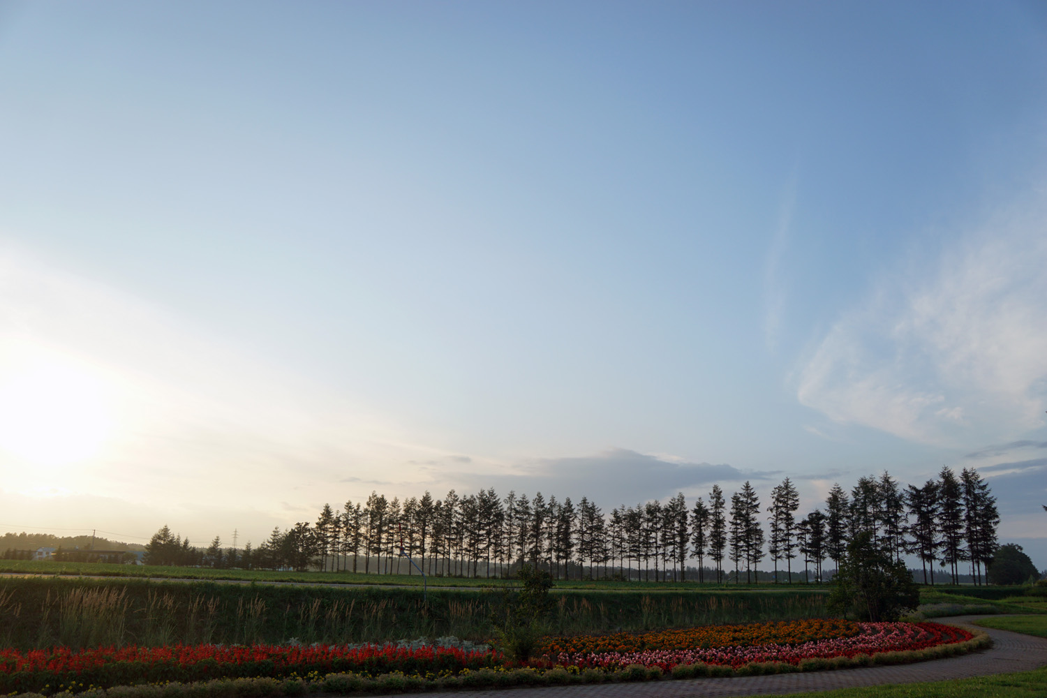 幸福駅④ 2015.8.3