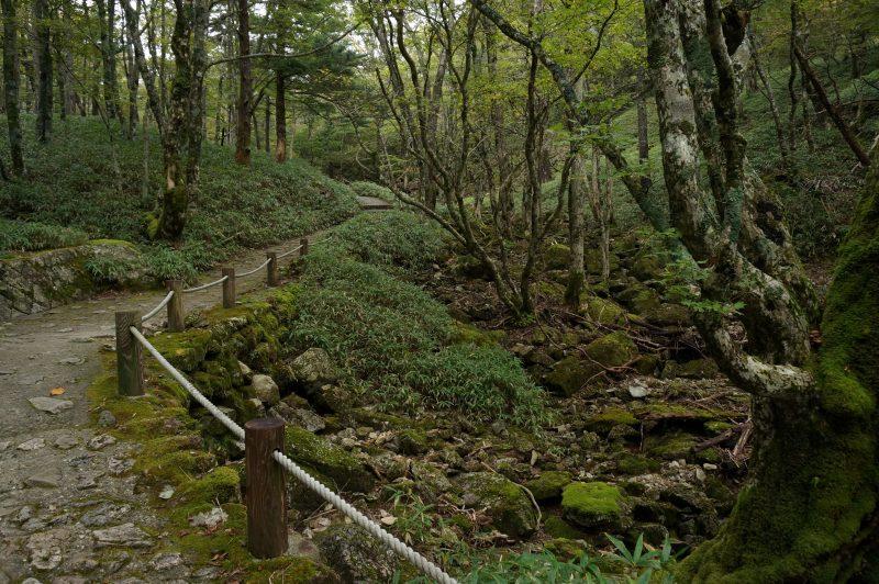 登山歩道②