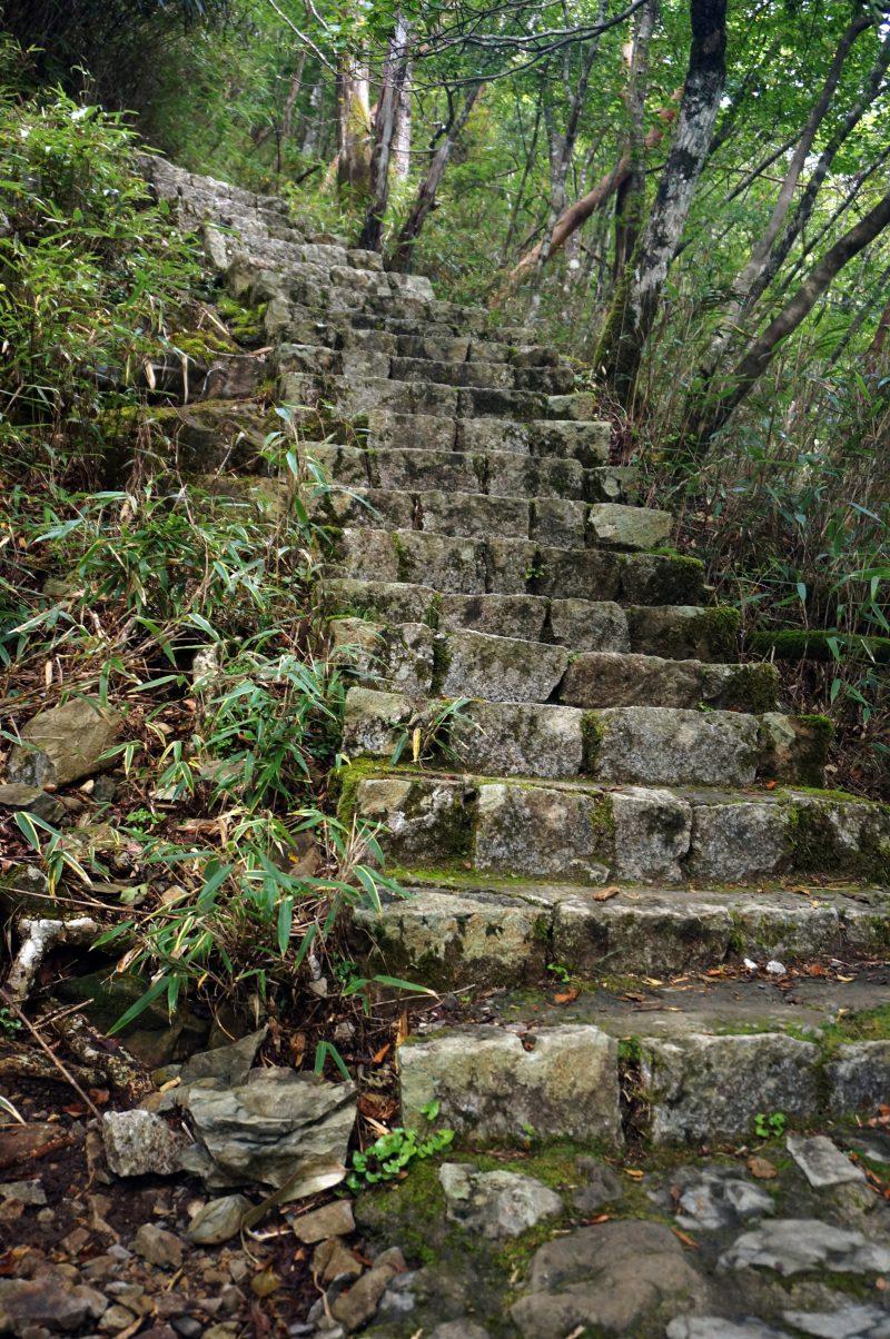 シオカラ谷からの登り階段