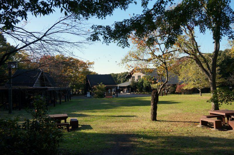 東京湾野鳥公園②