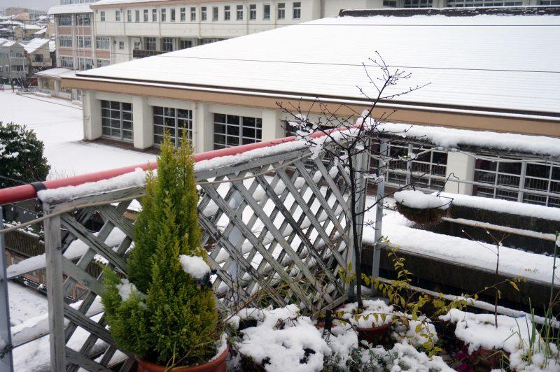 ベランダの雪②
