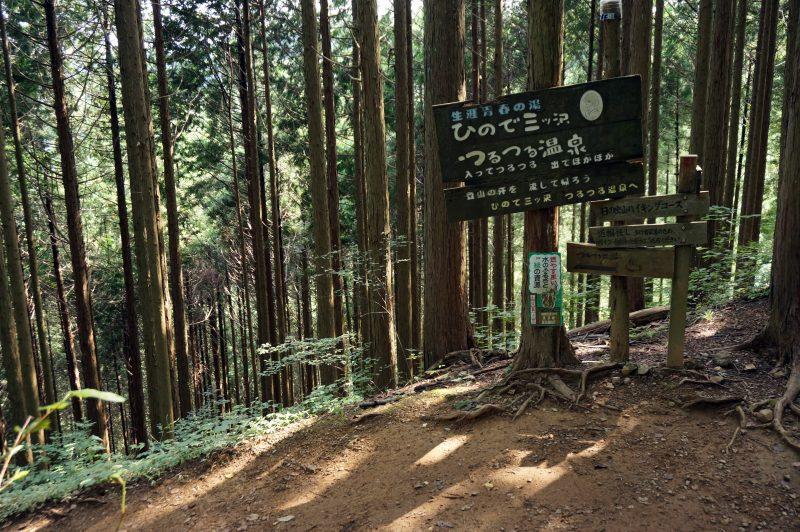 日の出山ハイキングコース①
